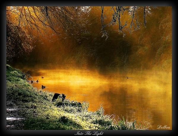 Into The Light by Delbon
