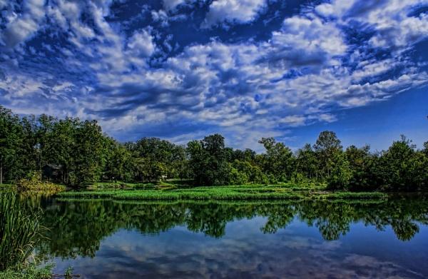 Beautiful Day by RickFreid
