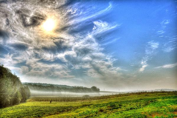 Morning Mist by gabymarian