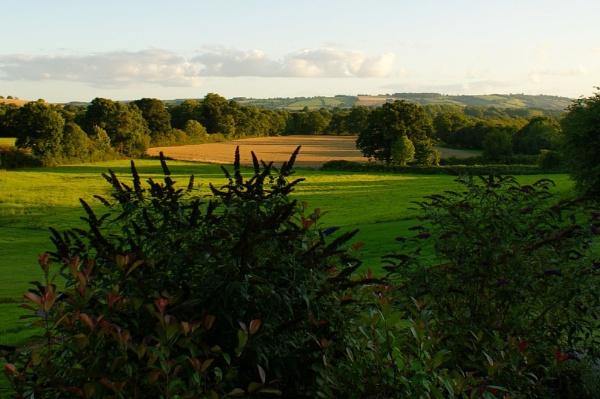 Devon country side by Jen10