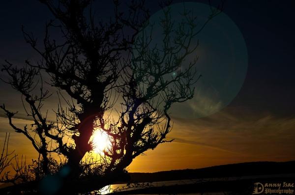 Silhouette by sdannyd
