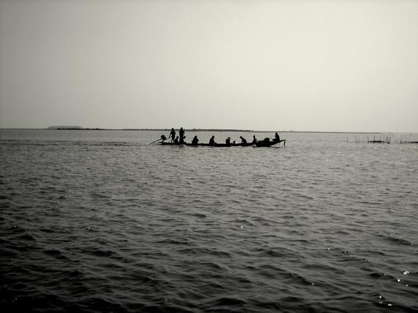 Destiny of Life. by BHUBAN