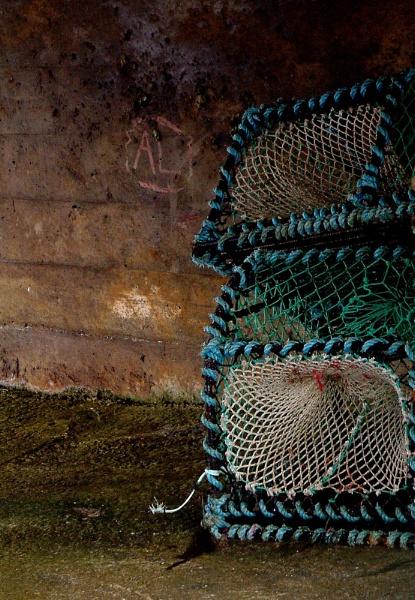 Cowering Creels by ArtofOrdinary