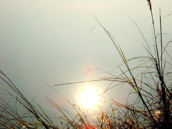 Brighting sun into water. by BHUBAN
