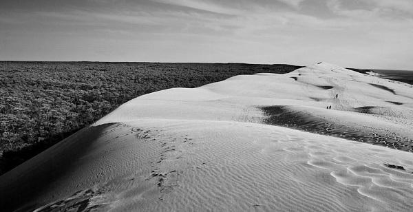 Dune de Pilat by AMS1
