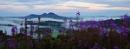 Scott's View, Scottish Borders by RobinChapman