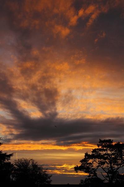 First Autumn Sunrise 2011 by warbstowcross