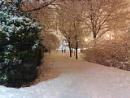 copper snow
