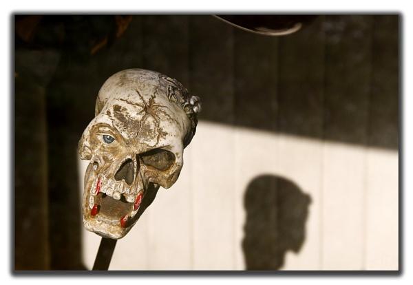Skull Knob by Montana5