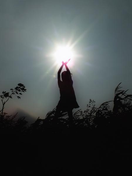 reach the sun by widjaba
