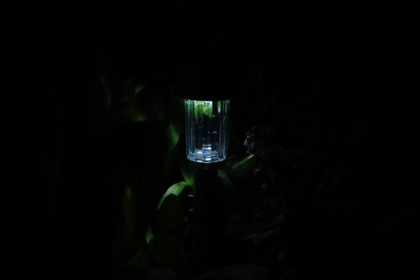 Garden Light by Gregoir