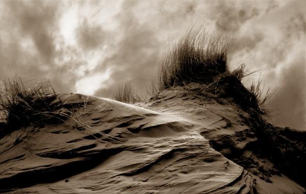Birkdale Dune by jcolind