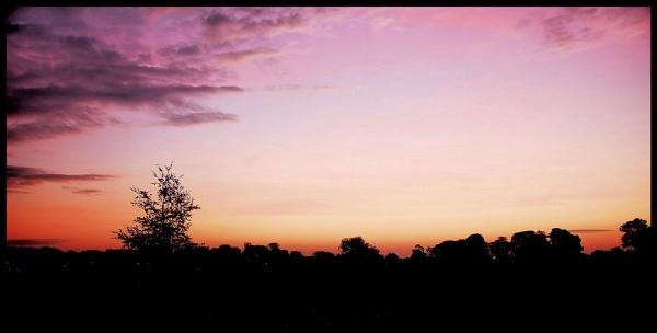 Sunrise in Sedgefield by mollstar