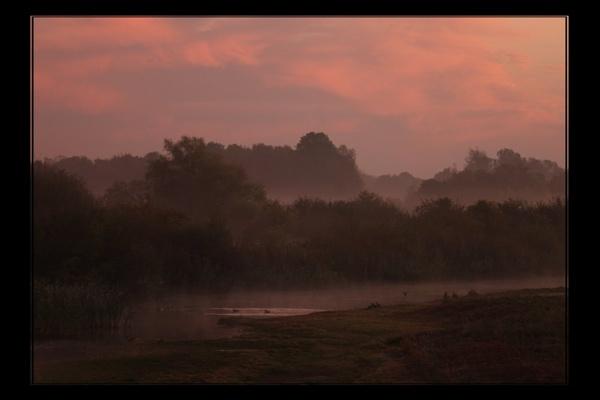 Pink mist by johnjones