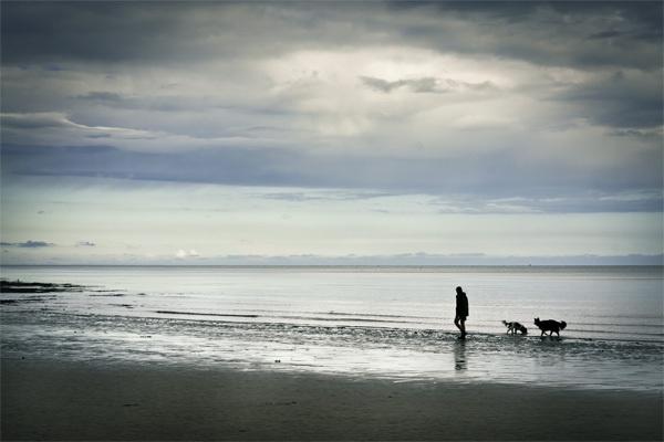 Danes Dyke dog walker by mymindseye