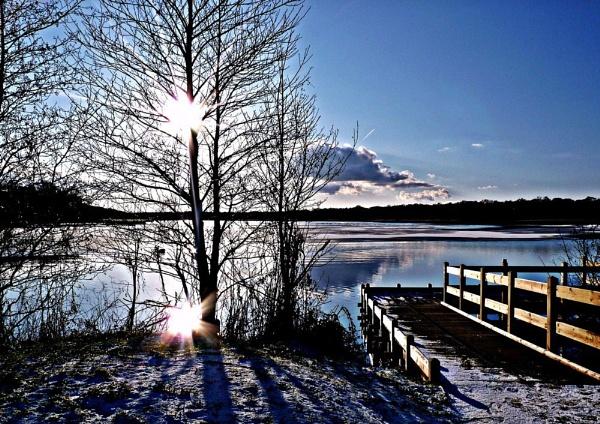 Frosty Morning by lyna1764