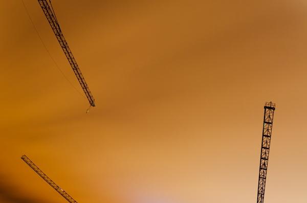 Cranes by Consulo