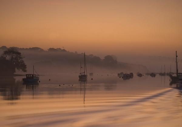 Dawn by ptoshea