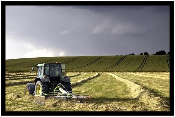 Farm by tbrown