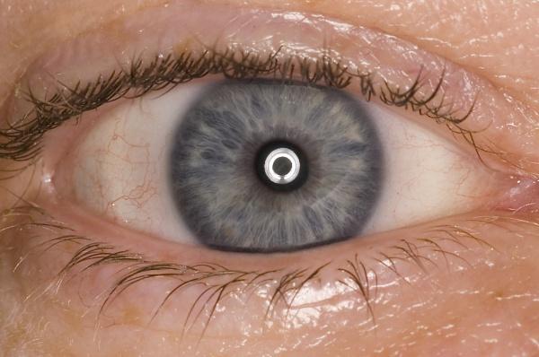 Eye by bfgstew