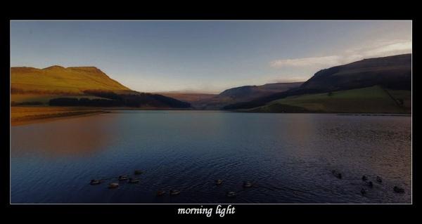 morning light by raygregson