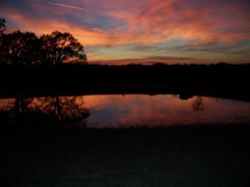 Pond at Dusk