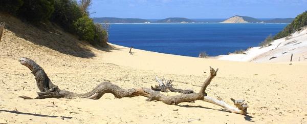 Fraser island Queensland, Australia by sooty_59