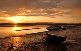 to dream of golden shore's