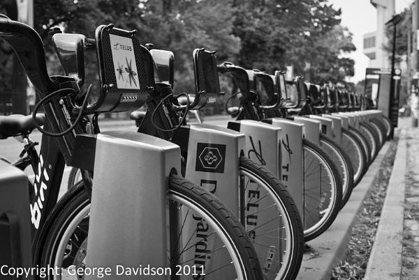 Bi-Cycle, Bi-Cycle, Bi-Cycle, I Want to... by Georden
