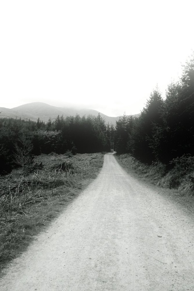 The Road by garyk44