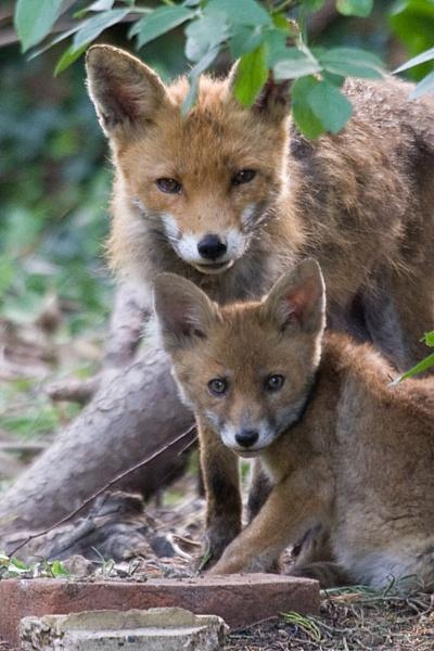 Mum & Son by xleex