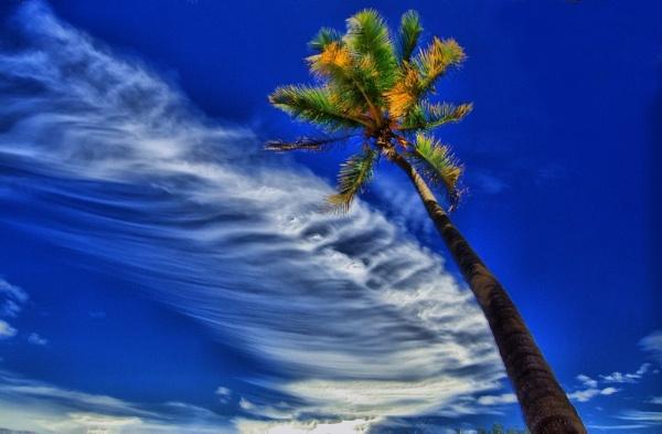 Blue sky by rajasekaranamie