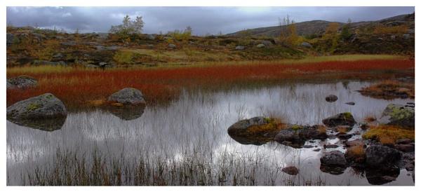 Norway Grasslands - September 2011 by Stevebishop