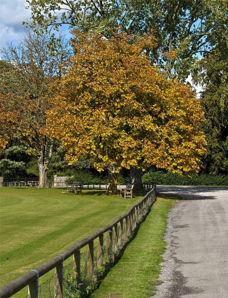 Autumn is near. by gaelldew