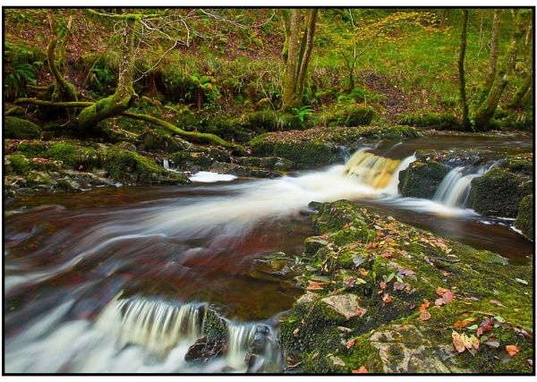 Down Stream ... by MD2009