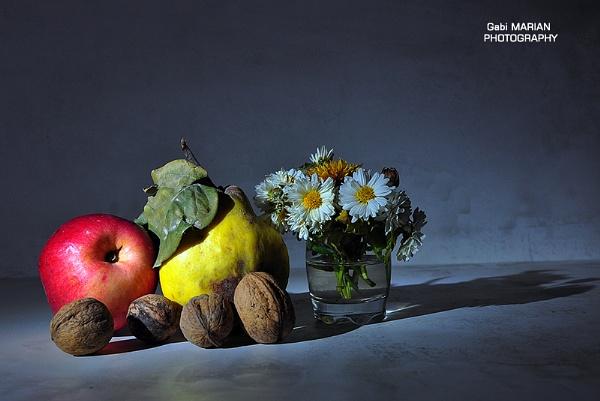 Autumn joys by gabymarian