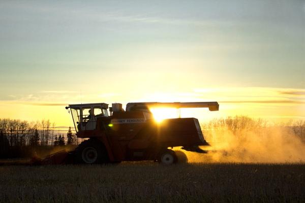 Harvest wrap up by inntrykk