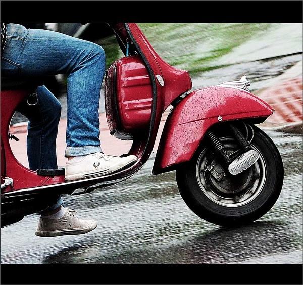 Scoot... by woodlark