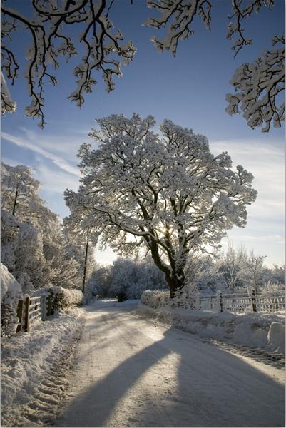 Winter Dec 2010 by Jim_EK
