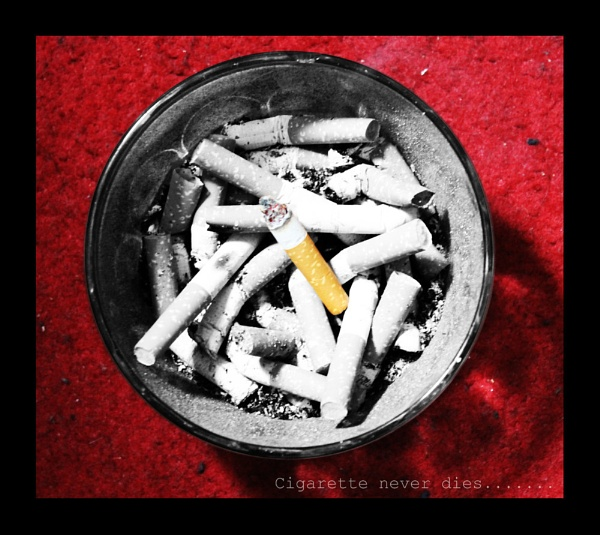 Cigarette never dies.... by modernist
