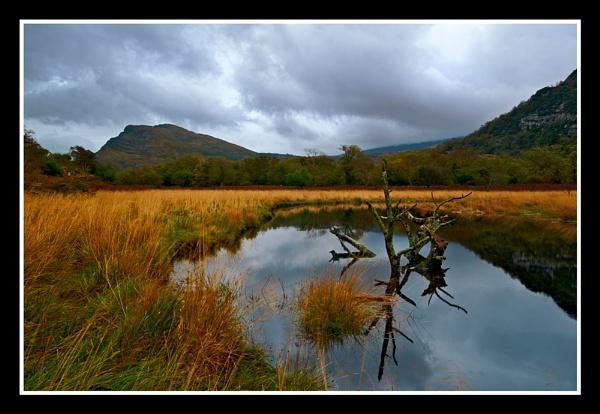 Killarney in Autumn by Fisher2