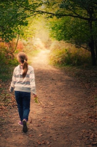 Woodland Walk by Brizzle