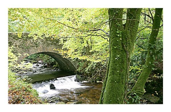 Autumn bridge by EMAC
