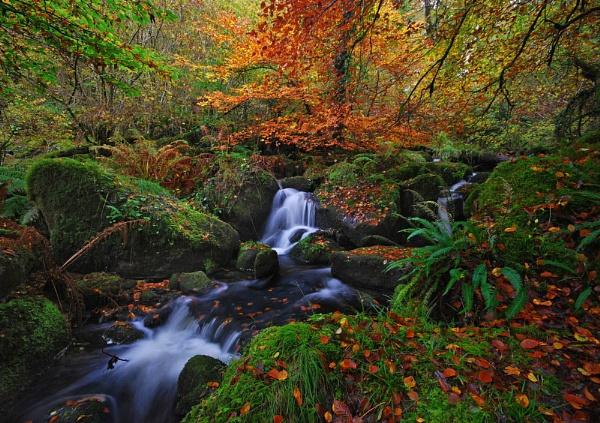 Meavy Falls by RichieJ