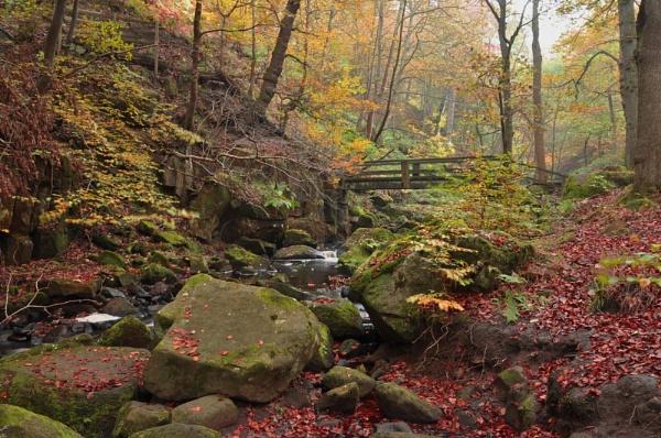 Autumnal Padley by kirkoid
