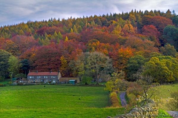Autumn Farm by AR_Photography