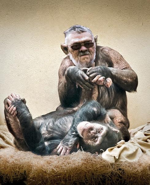 Apeman by thatmanbrian