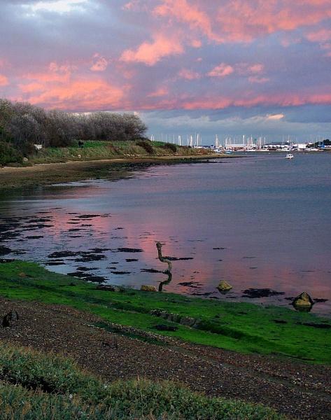 Pink Harbour by pamelajean