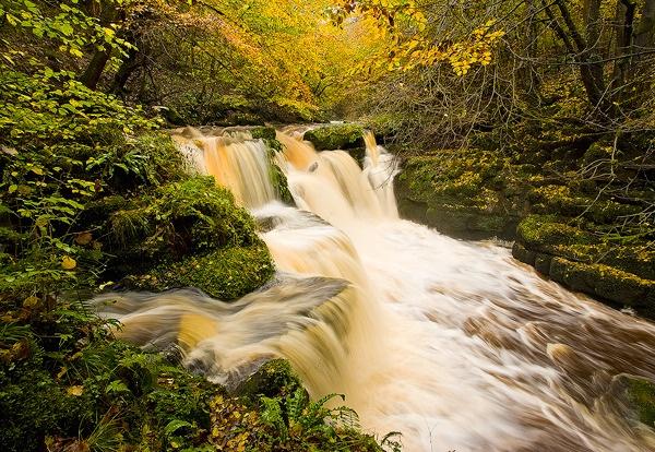 Golden Falls by Platchet