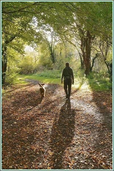 Walking the dog by JPatrickM